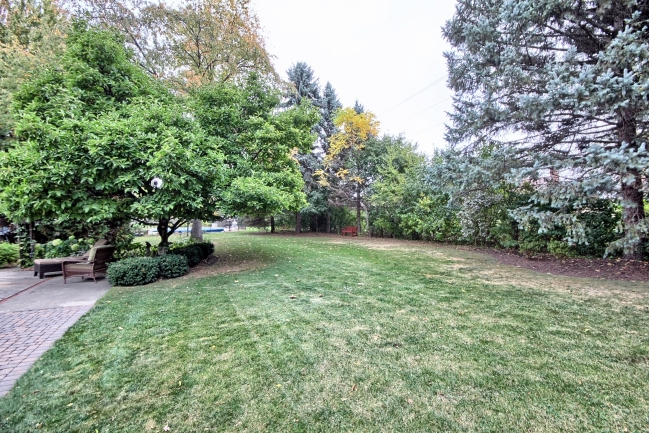 grass and trees in backyard in Northville Commons home